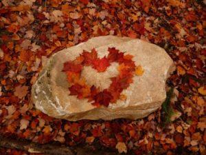 love leaves art